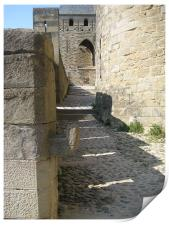 Carcassonne inside the walls, Print