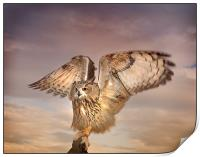 The Eagle Owl Has Landed, Print