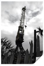 Cranes, Print