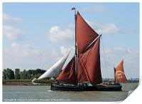 Thames Barge Cabby, Print