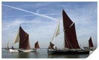 Maldon Barge Match 2010, Print