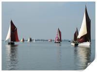 Maldon Barge Match 2008, Print
