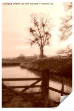 By The Riverbank, Print