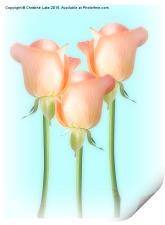 Simply Roses, Print