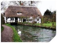 Old Mill Cottage - Alresford, Hampshire, Print