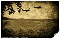 Over The Poppy Field 2, Print
