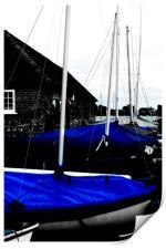 Blue, Print