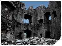 Castle Ruin, Print