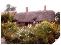Cottage, Print
