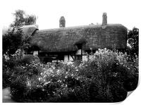 Cottage B&W, Print