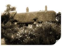 Cottage (Sepia), Print