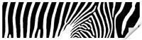 Stripes, Print