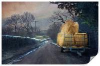 Down the lane, Print