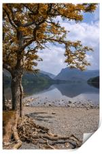 Lake Buttermere, Print