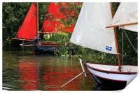 Sail Boats, Print