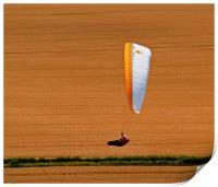 Wheat Field Paraglider, Print