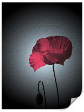 Dark Remembrance Poppy, Print