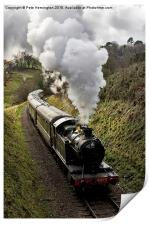 Kingswear to Paignton Train, Print