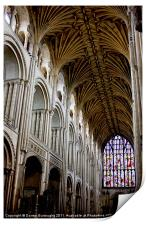 Illuminating Norwich Cathedral, Print