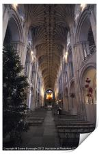 Norwich Cathedral, Print