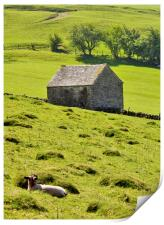 Lazy Day In The Peak District, Print