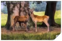 Buck Deer Painterly, Print
