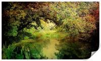 Autumn Walks.., Print