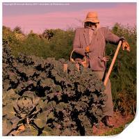 Scarecrow at Sunset, Print