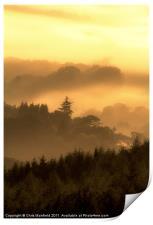 Misty Morning, Print