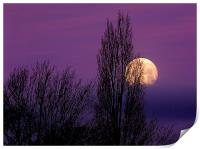 Abstract Moon, Print