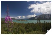 Yukon Lake, Print