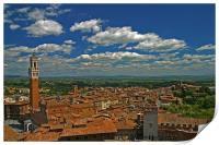 Siena Panoramic II, Print
