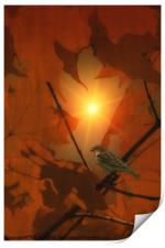 SPARROW IN THE LEAVES, Print