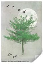 A TREE IN THE MOONLIGHT, Print