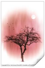 A TREE IN PINK, Print
