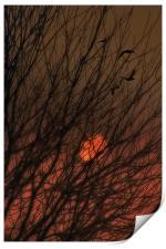 East Of The Sun II, Print