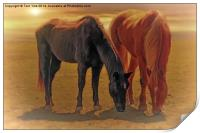 Horses In The Sunset, Print