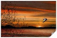 Wild Goose In Flight, Print