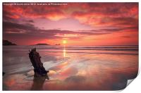 SHIPWRECK SUNSET, Print