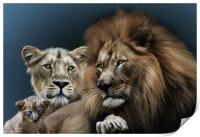 Lion Family, Print