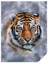 Sky Tiger, Print