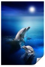 Dolphin Delight, Print