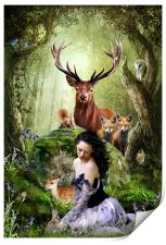 Woodland Wonders, Print
