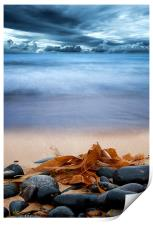 Beach and Stones, Print