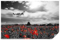 Spitfire Poppy Pass, Print