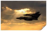 Tornado Role Demo, Print