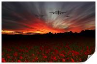 A Poppy Field Dream , Print