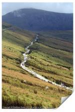Snowdon Path, Print