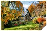 Cottage Garden , Print