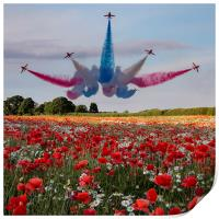 Red Arrows, Print